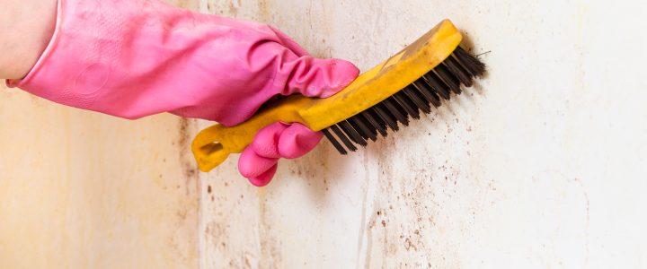 İnşaat Sonrası Temizliği En İyi Şekilde Nasıl Yapılmaktadır